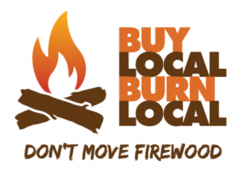 Buy Local Burn Local