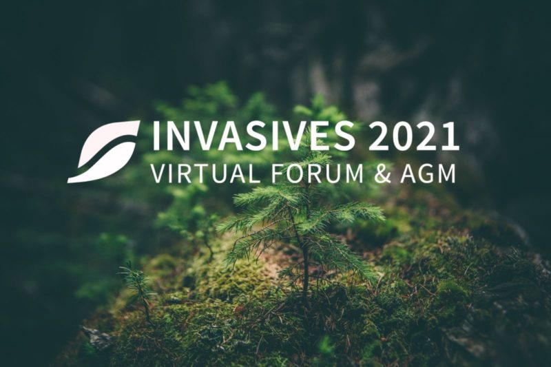 INVASIVES 2021 Forum Recordings Now Available