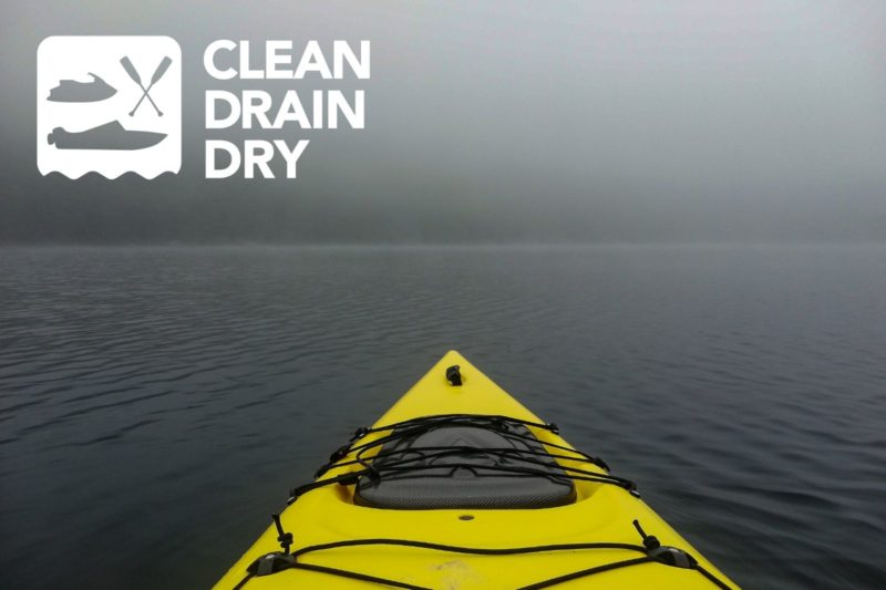 Call for Year Three Clean Drain Dry Partners