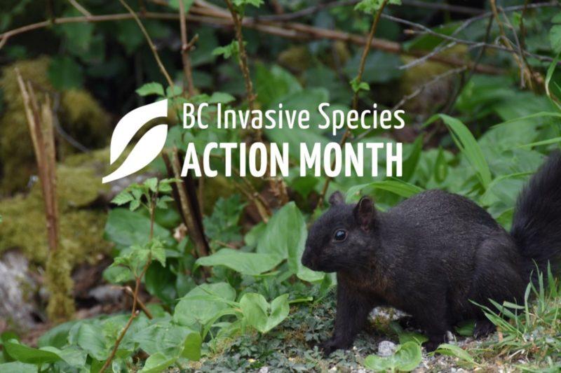 ISAM: Invasive Species Council of Metro Vancouver Spring Forum