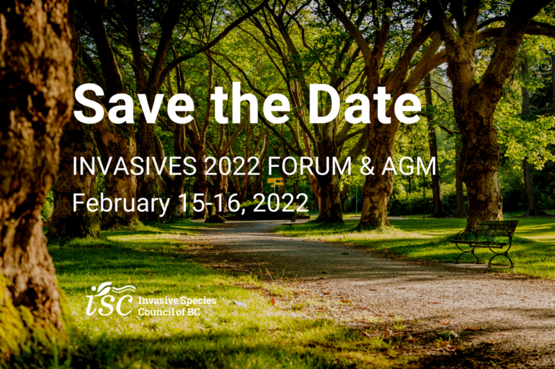 Save the Date: INVASIVES 2022 Forum & AGM